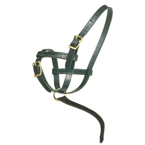 ai01597 Premier Leather Foal Halter - Newborn