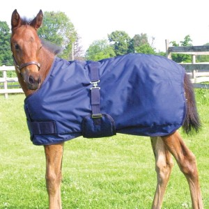 ai17624 StormShield® Expandable Foal Turnouts XL Foal