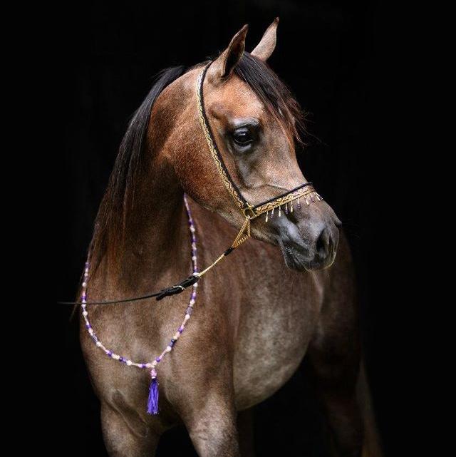 ai00131_Purple-handmade-necklace